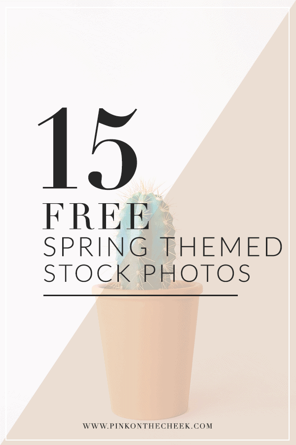 15 Free Spring Themed Stock Photos